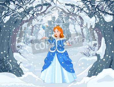 Posters Illustration de la princesse avec oiseau près de Magic Winter Castle