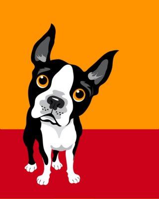 Posters illustration drôle de Boston Terrier