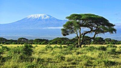 Posters Kilimandjaro