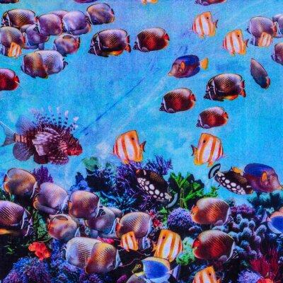 Posters la texture de l'impression de tissu rayé aquarium