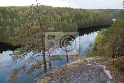 La vue sur le lac et la forêt sauvage du haut de la falaise dans le parc national de Repovesi. Sud-Est de la Finlande.
