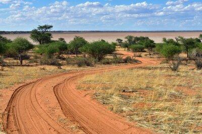 Posters Le désert du Kalahari, Namibie
