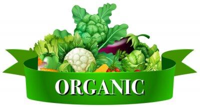 Posters Légumes, bannière