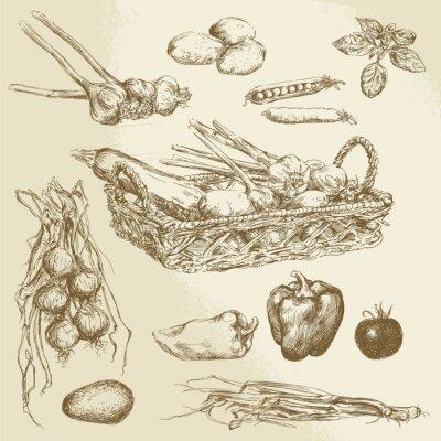Posters légumes - collection dessinée à la main