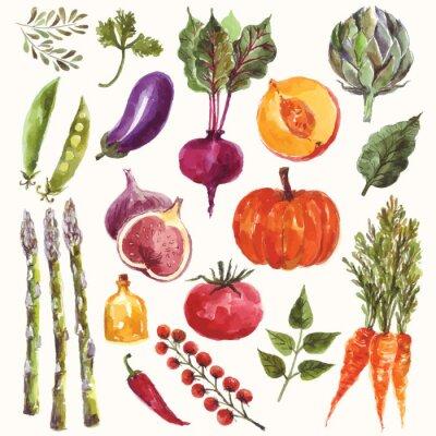 Posters Légumes et fruits Aquarelle