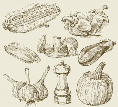 Posters Légumes set dessinées à la main