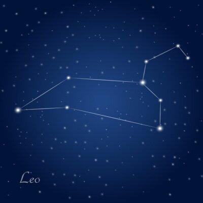 Posters Leo signe constellation du zodiaque au ciel étoilé