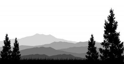 Posters les forêts de conifères pour vous concevez