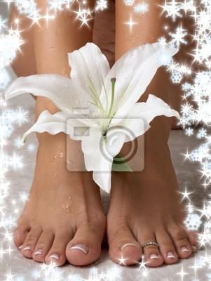 les pieds mouillés et les lys de la Madone avec des flocons de neige