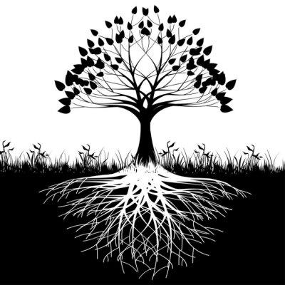 Posters Les racines des arbres silhouette