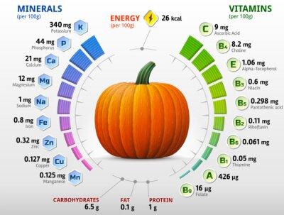 Posters Les vitamines et les minéraux de la citrouille. Nutriments hiver de squash