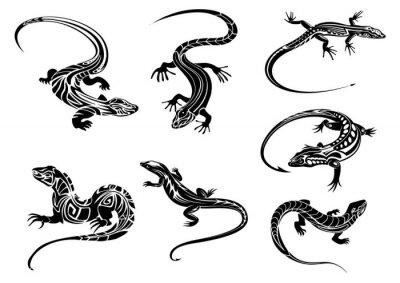 Posters Lézards noirs avec ornement tribal