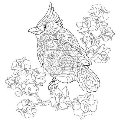 Coloriage Arbre Et Oiseau.Livre Pour Colorier Page De Loiseau Cardinal Rouge Du Nord Assis