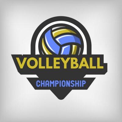 Posters Logo de sports de volleyball.