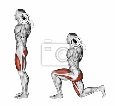 Posters Lunges avec une barre sur vos épaules. Exercice pour la musculation.  Les muscles aa2e662647a