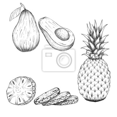 Posters Main Dessin Croquis Style Illustration Ananas Avocat Illustrations