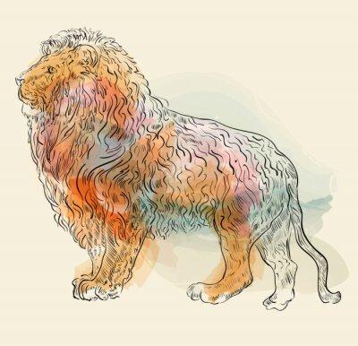 Posters Main, dessiné, vecteur, Illustration, lion