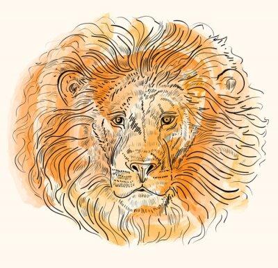 Posters Main, dessiné, vecteur, Illustration, lion, tête