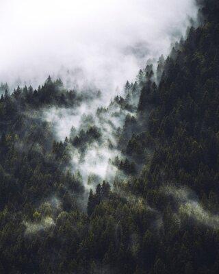 Posters Mgła