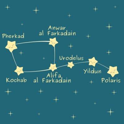 Posters Mignon dessin animé peu dipper constellation avec le nom de les étoiles vecteur illustration