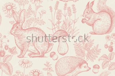 Posters Modèle sans couture animaux et plantes de la forêt. Lièvre, hérisson, écureuil, baies fraîches, fleurs lavande, camomille et champignons. Dessin à main levée. Blanc et rouge Gravure Vintage. Illustrat