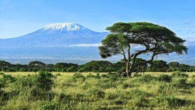 Posters Mont Kilimandjaro au Kenya