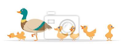 Posters Mother duck. Row of wild ducks birds family walking vector cartoon collection. Duck mother, wild duckling illustration