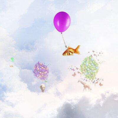 Posters Mouche, poisson rouge, ballon
