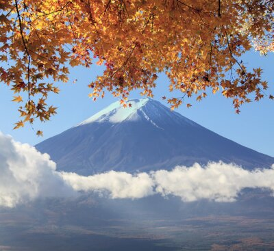 Posters Mt. Fuji with fall colors in Japan