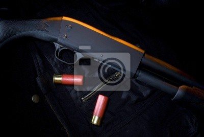 Posters Mystère fusil de chasse