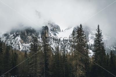 Posters Nature dans les Dolomites, Italie