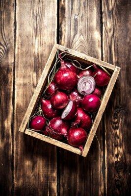 Posters Oignon rouge frais dans une vieille boîte.