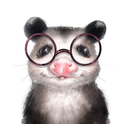 Posters Opossum illustration. Cute animal portrait isolated on white