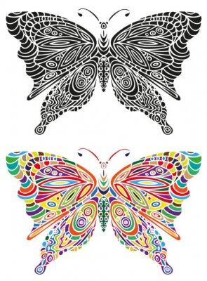 Posters Ornement papillon couleur et noir