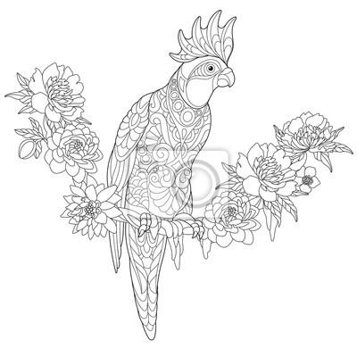 Coloriage Anti Stress Perroquet.Posters Page Pour Colorier Du Perroquet De Cockatoo Assis Sur Une Liane