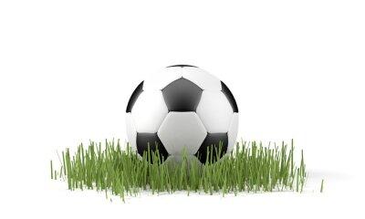 Posters Palla da calcio di erba