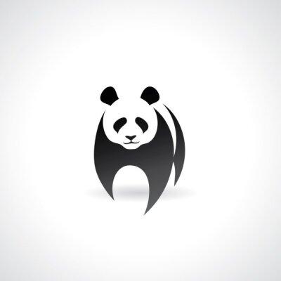 Posters Panda géant