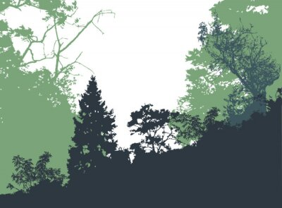 Posters Panoramic forest landscape with silhouettes of trees