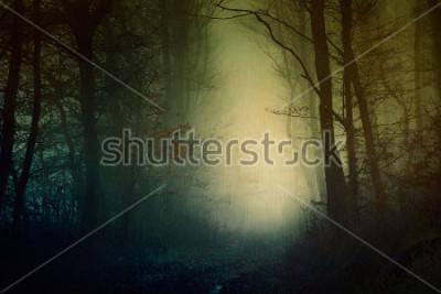 Posters Papier peint mystique forêt sombre