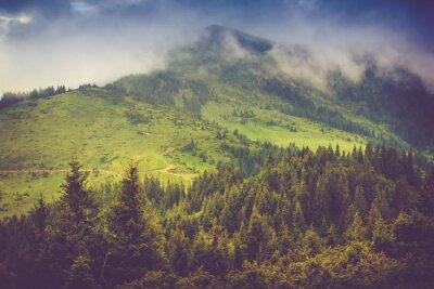 Posters Paysage de montagne et forêts couvertes de brume. Ciel couvert dramatique.