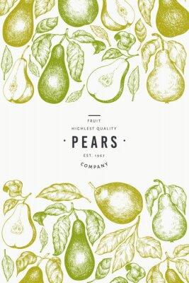Posters Pear design template. Hand drawn vector garden fruit illustration. Engraved style garden fruit frame. Retro botanical banner.