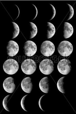 Posters Phases de lune Éléments de cette image fournis par la NASA.
