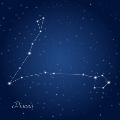 Posters Pisces constellation zodiac sign at starry night sky