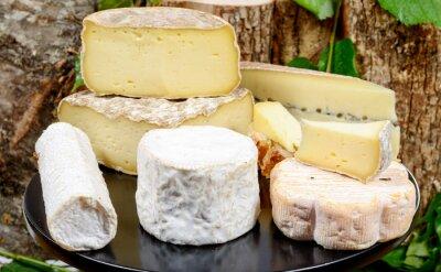Posters plateau avec différents fromages français