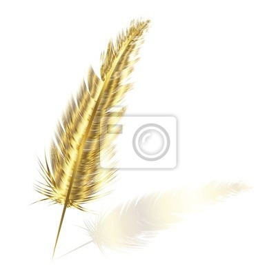 plume d'or
