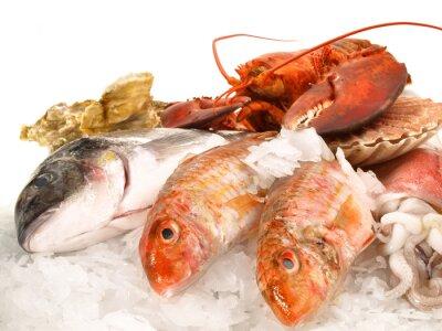Posters Poissons et fruits de mer