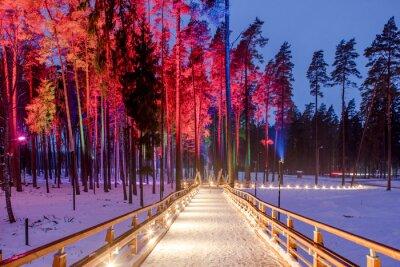 Posters Pont en bois dans le parc forestier. Nuit lumières multicolores.