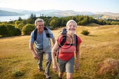 Posters Portrait, couple aîné, colline, escalade, randonnée, campagne, lac, royaume-uni, royaume-uni, ensemble