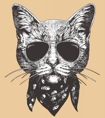 Posters Portrait of Cat with sunglasses and scarf. Hand-drawn illustration. Vector