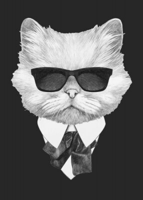Posters Portrait of Persian Cat in suit. Hand-drawn illustration. Vector isolated elements.